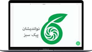 سایت طراحی شده برای تولیدی لمون اجرا توسط گروه راحت بین RahatBin