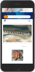 نسخه موبایل نمونه کار طراحی سایت قزل آنلاین توسط آژانس خدمات کسب و کار راحت بین RahatBin
