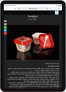 سایت معرفی طراحی شده توسط گروه راحت بین RahatBin برای صدراپلاست
